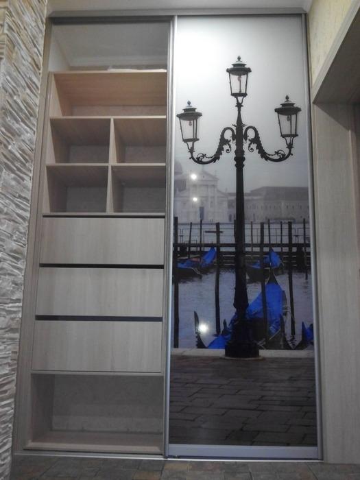 Встроенные шкафы-купе-Шкаф-купе с фотопечатью «Модель 54»-фото2